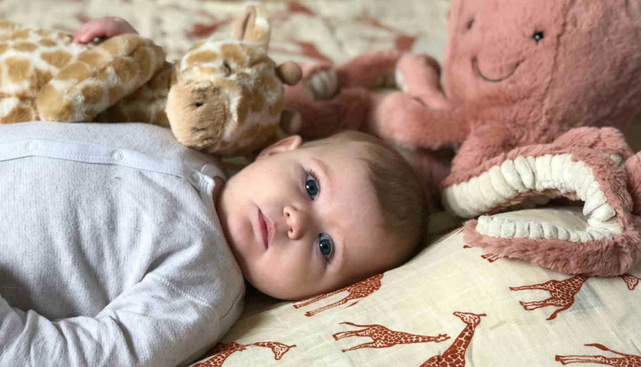 Baby Harrie with the Jellycat Odell Octopus and Puffles Giraffe