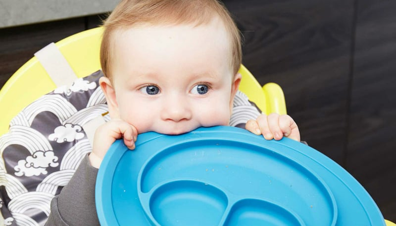 Baby chewing on a placemat