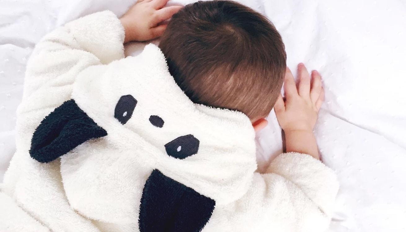 trending: Panda Pals - KIDLY